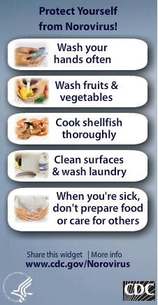 Protect Yourself from Norovirus wash hands, was produce, cook food thoroughly, clean surfaces, do no